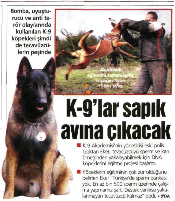 YENİ ŞAFAK 17 KASIM 2008
